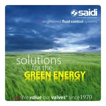 Solutions for the GREEN ENERGY - SAIDI