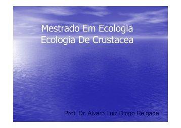 Aula Ecologia De Campo.ppt [Modo de Compatibilidade]
