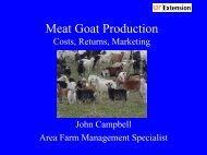 Meat Goat Production - Cost, Returns, Marketing ... - UT Extension