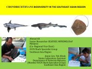 chondrichthyans biodiversity in the southeast asian ... - seafdec.org.my