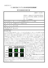 熱ショックに対する魚類細胞の応答メカニズムの解析 - 北海道大学 ...