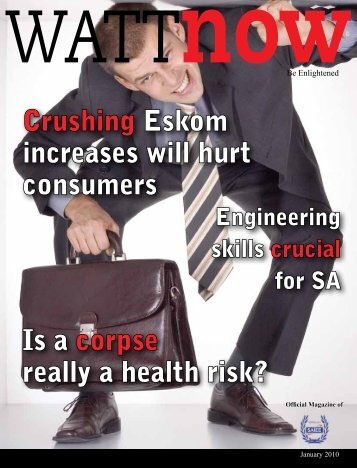 download a PDF of the full January 2010 issue - Watt Now Magazine
