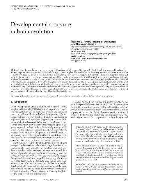Developmental Structure In Brain Evolution Psychology