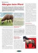 ARIAT® Reithose Olympia - Euroriding - Page 6