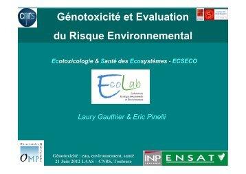 Laury Gauthier GENOTOXICITE - LAAS - 210612 - LAAS CNRS