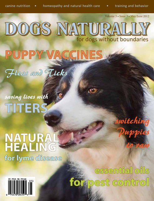 Download The Pdf Version Dogs Naturally Magazine