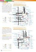 La pollution de l'eau - Page 5