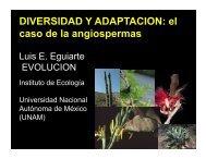 Agave - Instituto de Ecología - UNAM