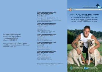La brochure - Fnovi