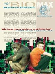 Wie kam Homo sapiens vom Affen los? 1 - Scinexx