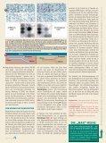 Wie kam Homo sapiens vom Affen los? 1 - Scinexx - Seite 4