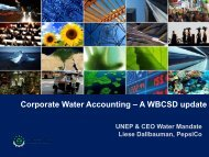 Liese Dallbauman - CEO Water Mandate