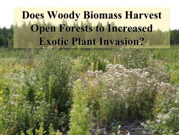 Does Woody Biomass Harvest Open Forests to Increased Exotic ...