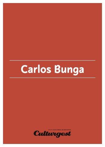 Carlos Bunga - Culturgest