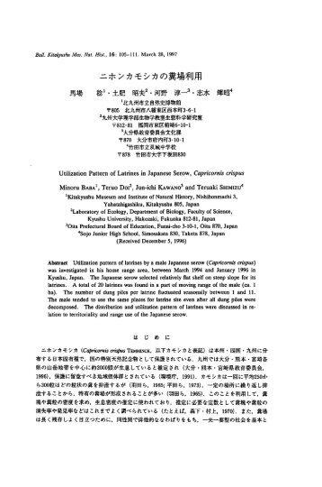 424KB - 北九州市立 いのちのたび博物館【自然史・歴史博物館】