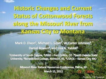 Historic Changes and Current Status of Cottonwood Forests along ...