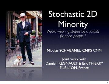 Stochastic 2D Minority - CMM