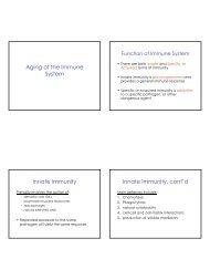 Aging of the Immune System Innate Immunity Innate Immunity, cont'd
