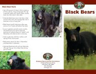 Black Bears - Arkansas Game and Fish Commission