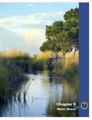 CHAPTER 8_81706.indd - Texas Water Development Board