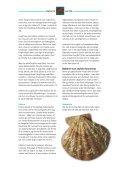 Bakterier og virus i fisk og skaldyr - FiskerForum.com - Page 2