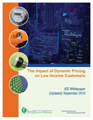 The Impact of Dynamic Pricing on Low Income Customers