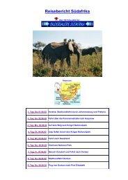 Reisebericht Südafrika - Schneider, Holger