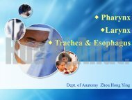 45. pharynx,larynx,trachea,etc.pdf