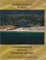 2009 Comprehensive Annual Financial Report (CAFR)
