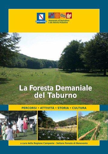 Scarica l'opuscolo illustrativo - Regione Campania