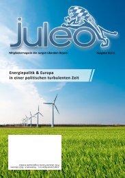 Energiepolitk & Europa in einer politischen ... - JuLis Bayern