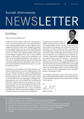 Newsletter 27 / Juli 2013 - Buchalik Brömmekamp