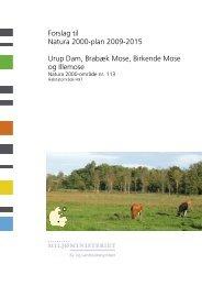 Forslag til Natura 2000-plan 2009-2015 Urup Dam ... - Naturstyrelsen