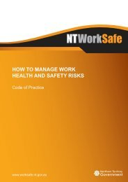 How to Manage Work Health and Safety Risks - NT WorkSafe ...