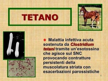 TETANO - Facoltà di Medicina e Chirurgia