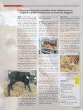 Diarrhée des veaux: mesures de lutte - Page 4