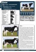 catálogo-de-toros-2012-12 - GGI German Genetics International ... - Page 6