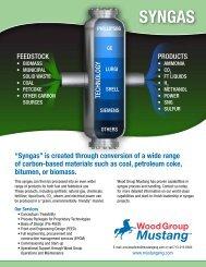 SyngaS - Mustang Engineering Inc.