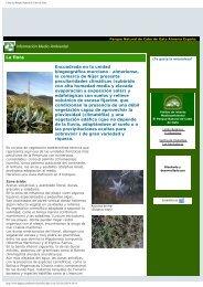 Flora del Parque Natural de Cabo de Gata - Aulados.net