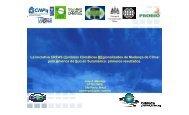 (Cenários Climáticos REgionalizados de Mudança de Clima para ...