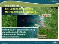 Bedeutung der Sedimentbelastung durch Schadstoffe für ... - FGG Elbe