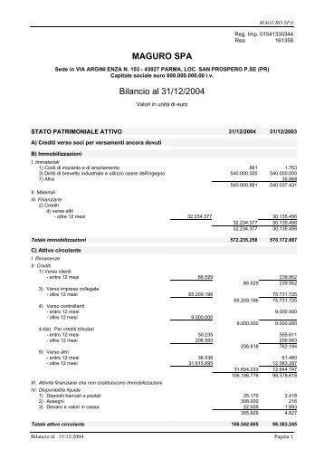 Bilancio 2004 e allegati Acrobat Reader (PDF) - Wgov.org
