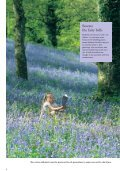 Bluebells for Britain - Plantlife - Page 4