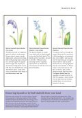 Bluebells for Britain - Plantlife - Page 7