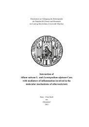Interaction of Allium sativum L. and Leontopodium alpinum Cass ...