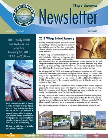 2011 Village Budget Summary 2011 Family Health and Wellness ...