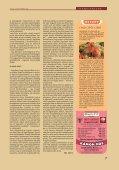 CSABA UTCA: ELHÁRUL AZ AKADÁLY - Savaria Fórum - Page 7
