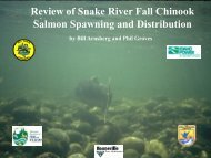 Review of Snake River Fall Chinook Salmon Spawning and ...