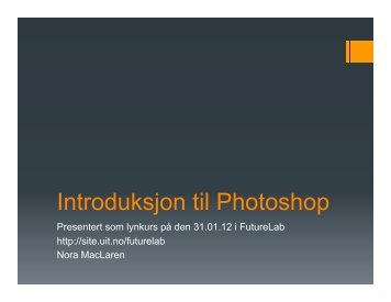 Introduksjon til Photoshop