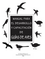 guías de aves - Society for the Conservation and Study of Caribbean ...